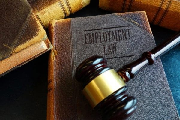 employment law nj